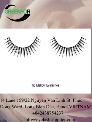 eyelashes supplier