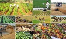 hợp tác kinh tế Việt Nam - Ấn Độ